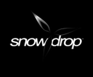 "Ubisoft โชว์เอนจินตัวใหม่ ""Snowdrop"" ใน Division !"